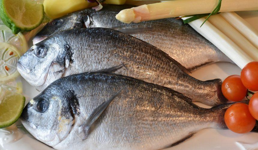 ¿Pescado azul o blanco? Diferencias y beneficios
